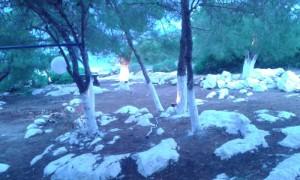fotismos-Uplight-07